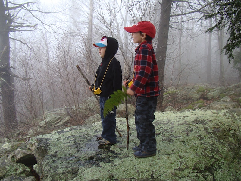 boys hiking standing on rock nature observations