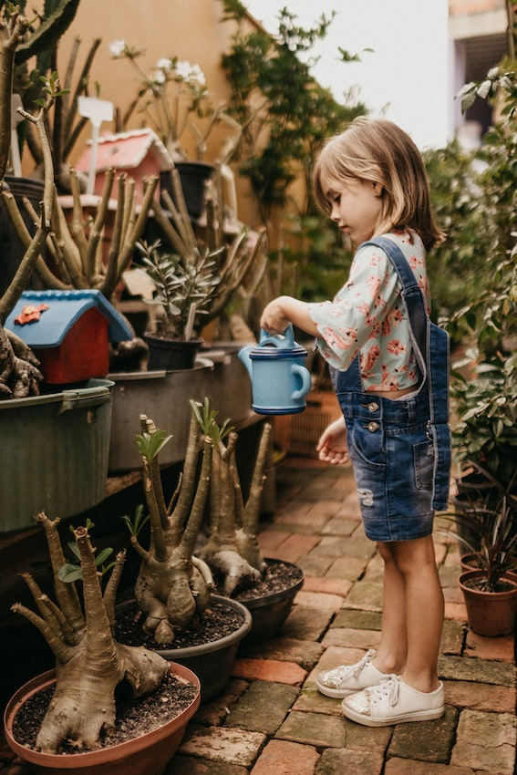 child watering plants - unschool